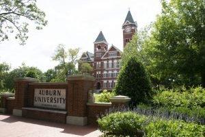 Tim Vines Confirmed as the Member of Auburn University